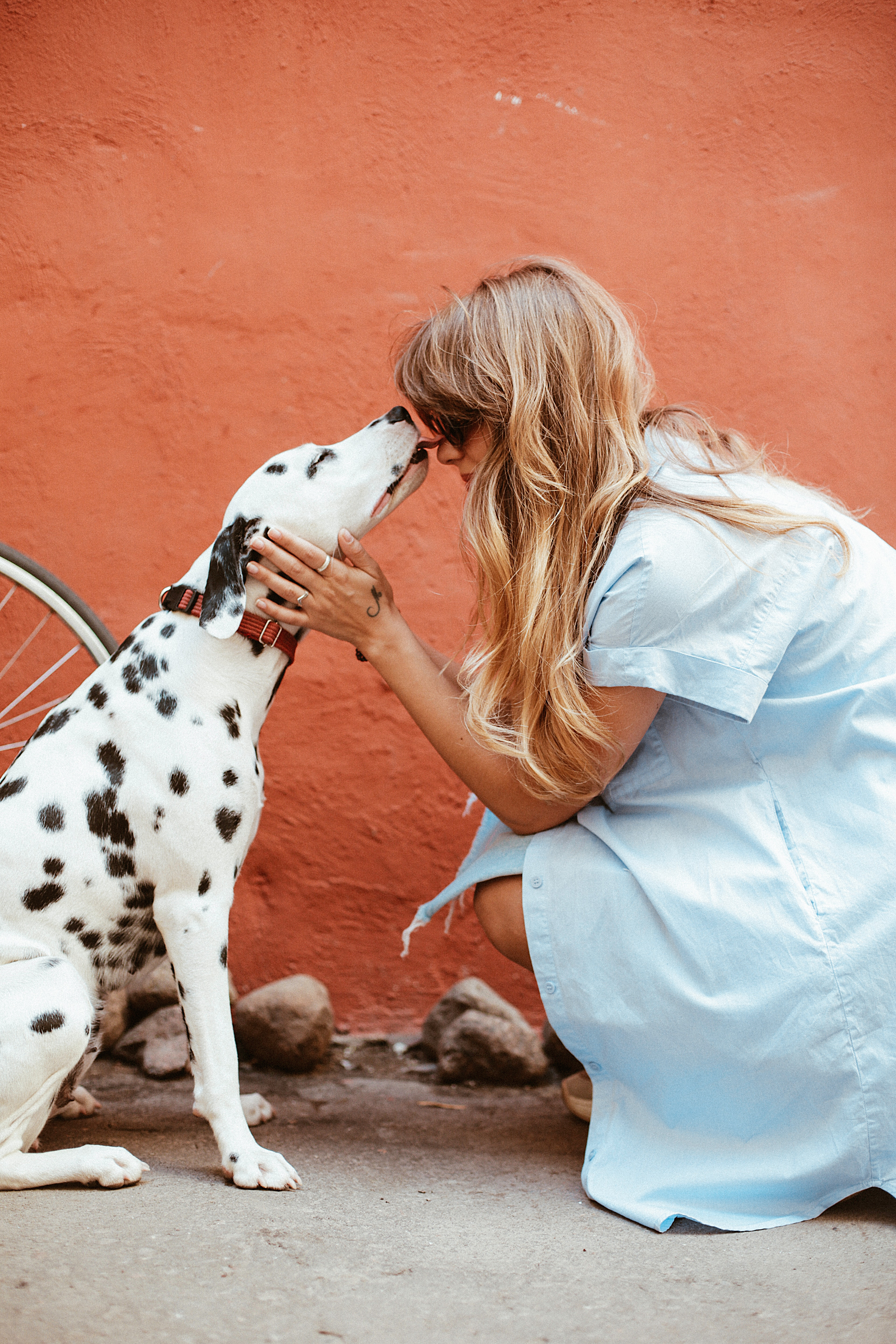 Kisses from a dog