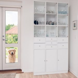 Wall mount dog door