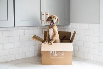 Best Fresh Dog Food Delivery
