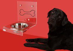 PetSafe smart feed review