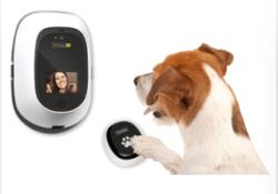 PetChatz Dog Video Chat