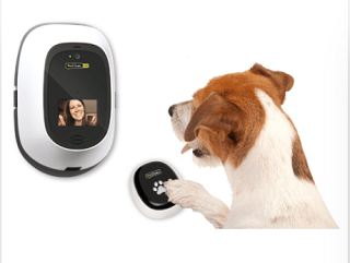 PetChatz Dog Video Chat